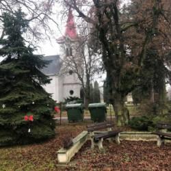 Stromček a lavičky pred obecným úradom